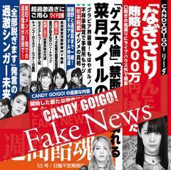 CDジャケットFakeNews.jpg